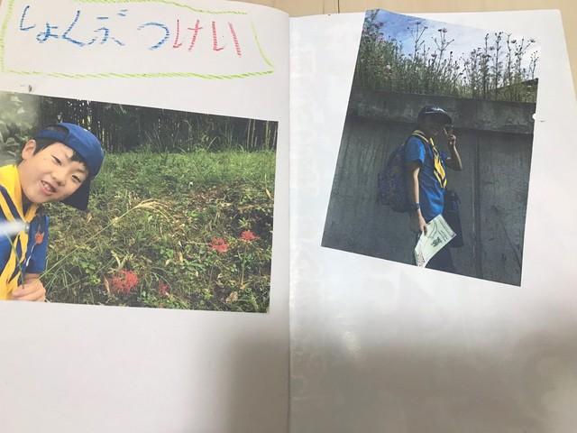 20181111 平和公園とナゴヤドーム_181112_0006.jpg