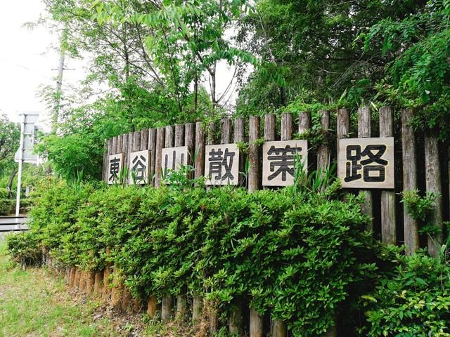 2019519東谷山散策_190520_0016.jpg