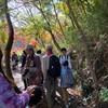 愛岐トンネル群散策/ビーバー隊(2019.11.23愛知県春日井市)